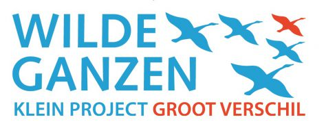 wildeganzen_logo_2015_cmyk_2